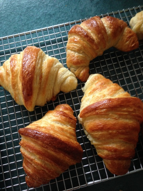 I made plain croissants, cheese, chocolate, and dried pork shreds + seaweed bits !